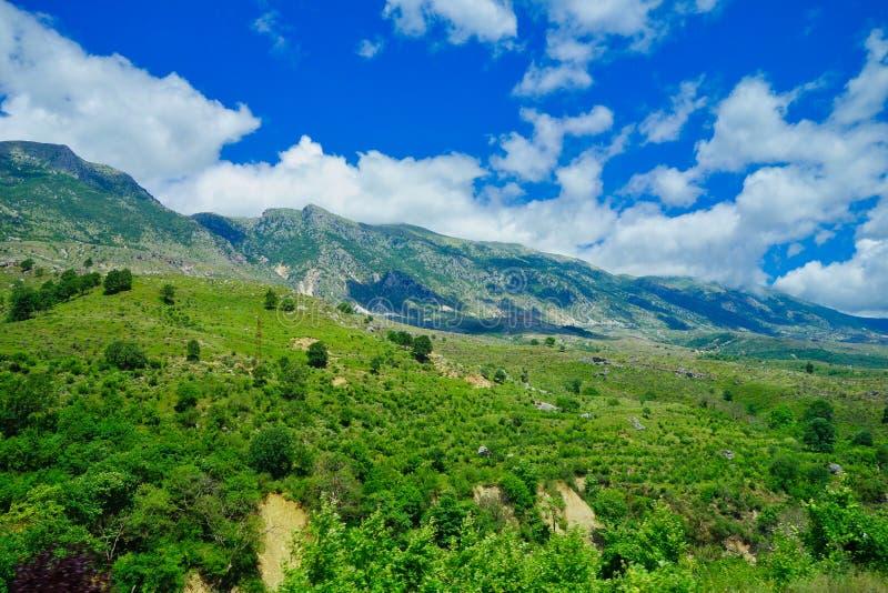 Het landschap van Albanië; Bergen, en Bos royalty-vrije stock afbeelding