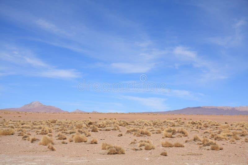 Download Het Landschap Van Altiplano Stock Afbeelding - Afbeelding bestaande uit rots, andes: 10780707