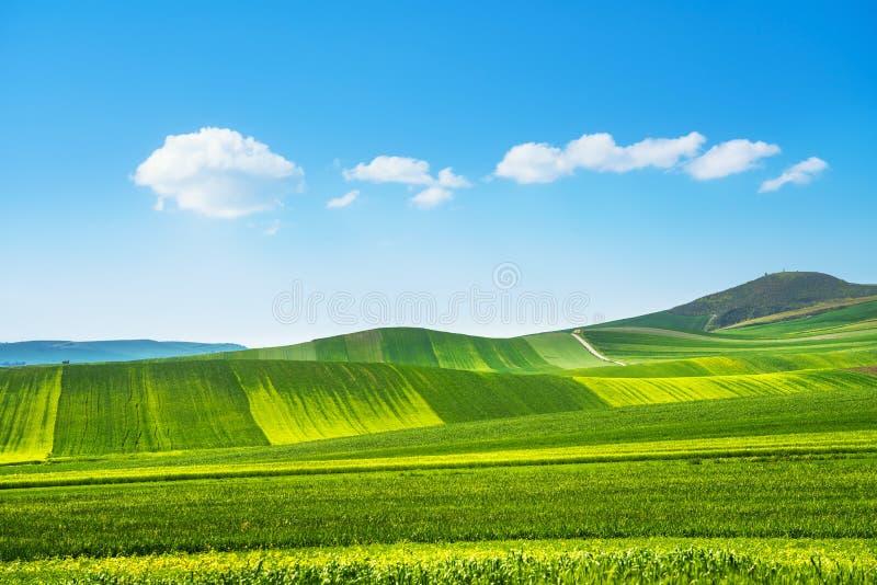 Het landschap van Apulië Poggiorsini, Murge Italy royalty-vrije stock afbeeldingen