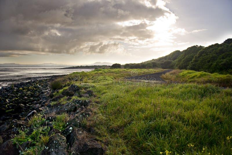 Het Landschap van Auckland stock afbeeldingen
