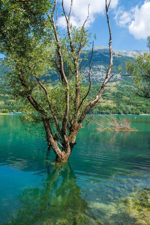 Het landschap van het Barrea-meer, Abruzzo, Italië royalty-vrije stock afbeeldingen