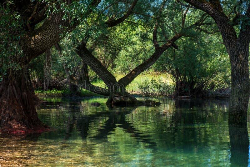 Het landschap van het Barrea-meer, Abruzzo, Italië stock afbeelding
