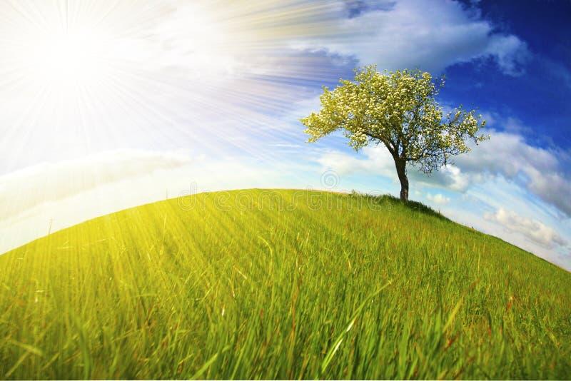 Het landschap van Beautifull met zonnestralen royalty-vrije stock afbeeldingen