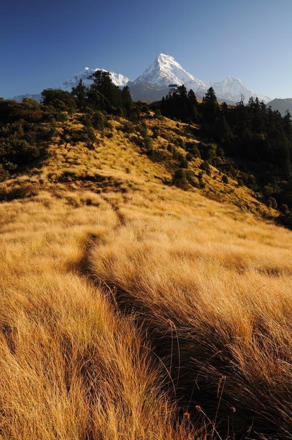 Het landschap van bergen, Poon heuvel, Nepal stock afbeeldingen