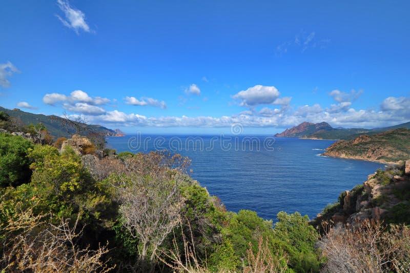 Het landschap van Corsica met overzees, vegetatie, kust en bergen stock foto