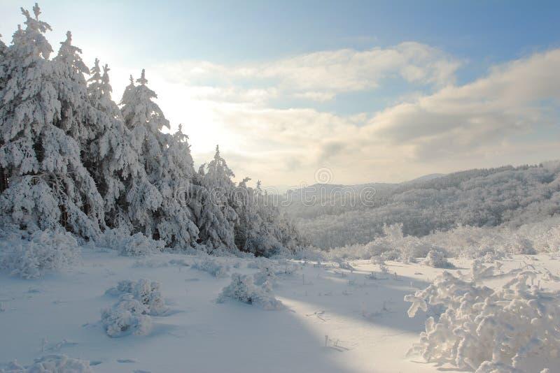 Het landschap van Cristmas van de winter van Bulgarije stock afbeeldingen