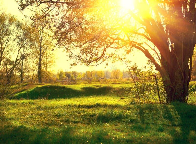 Het landschap van de aard Zonsondergang stock afbeelding