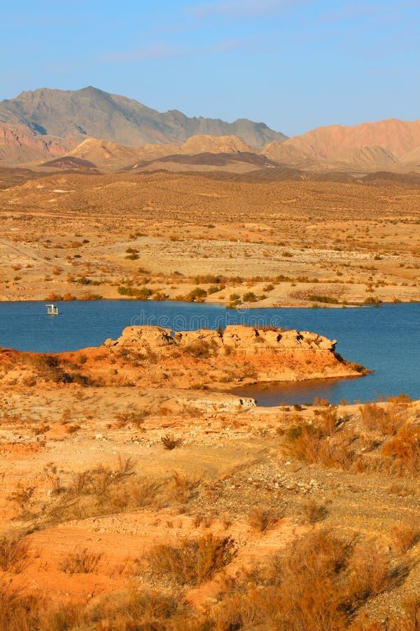 Het Landschap van de Avond van de Weide van het meer royalty-vrije stock foto's