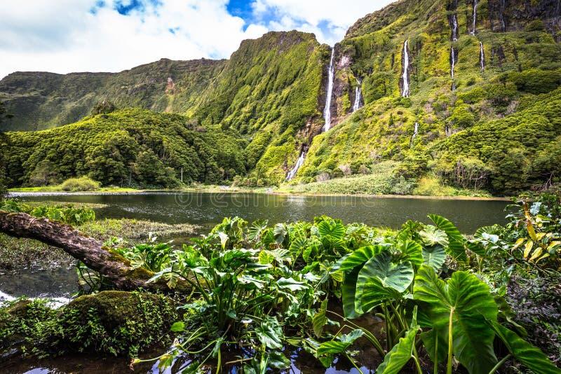 Het landschap van de Azoren in Flores-eiland Watervallen in Pozo DA Alagoin royalty-vrije stock afbeeldingen