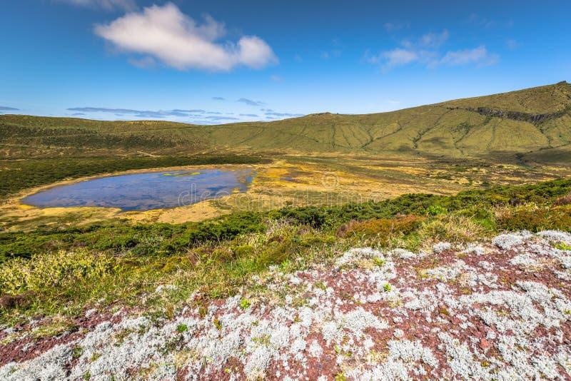 Het landschap van de Azoren in Flores-eiland Watervallen in Pozo DA Alagoin stock afbeelding