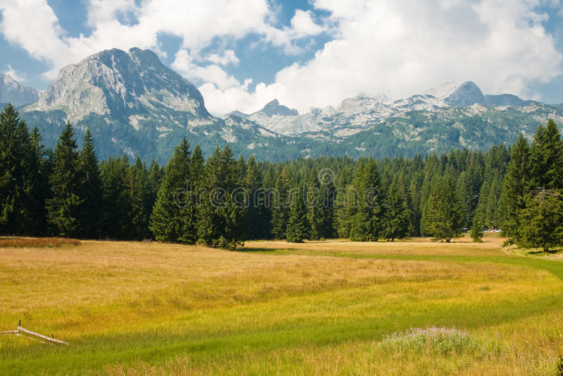 Het landschap van de berg, Nationaal park Durmitor stock foto's
