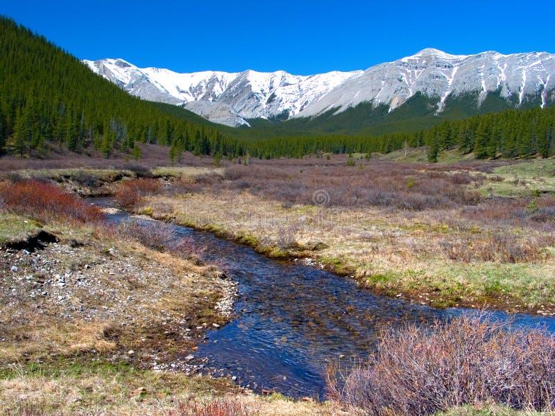 Het Landschap van de Berg van de lente stock foto's