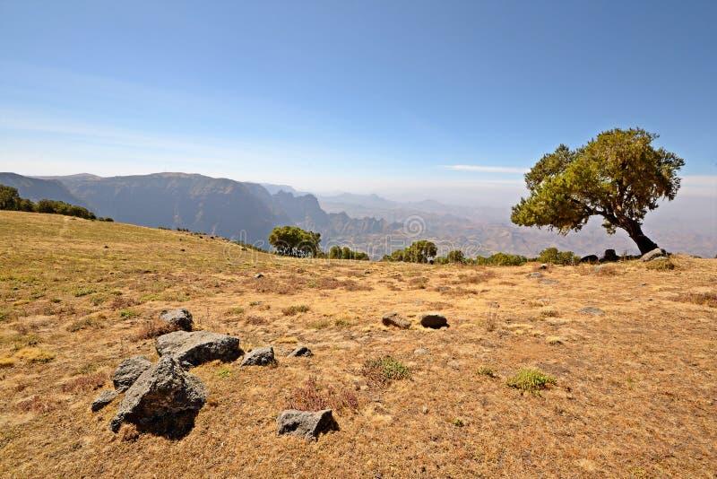 Het landschap van de Bergen van Simien stock foto's