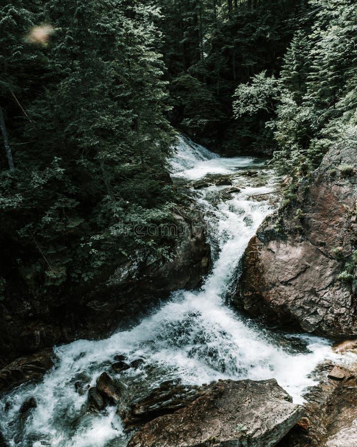 Het Landschap van de bergrivier stock afbeeldingen
