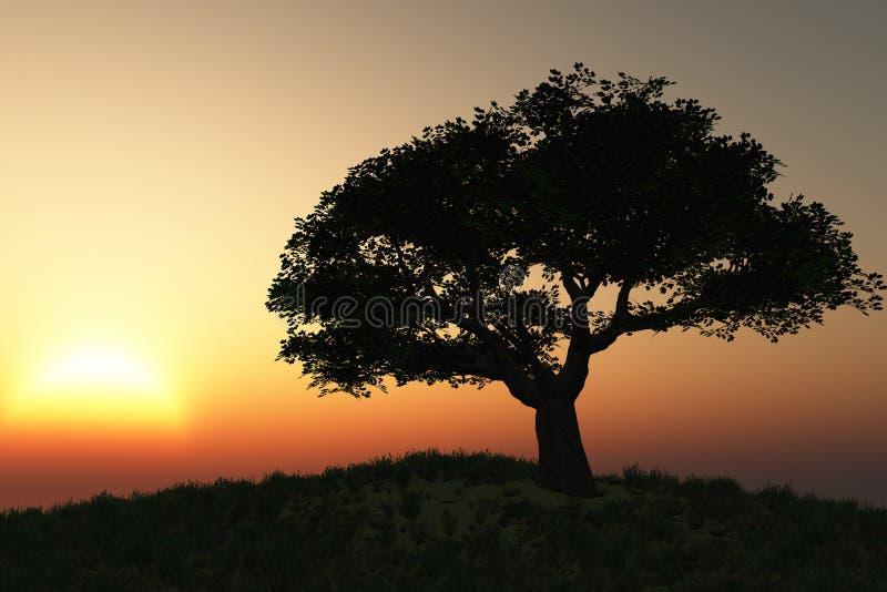 Het landschap van de boom royalty-vrije stock foto's