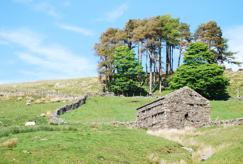 Het landschap van de Dallen van Yorkshire royalty-vrije stock fotografie