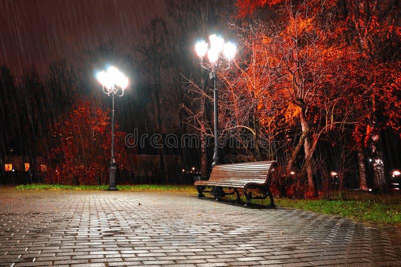 Het landschap van de de herfstnacht van het park van de nachtherfst onder dalende regen royalty-vrije stock afbeeldingen