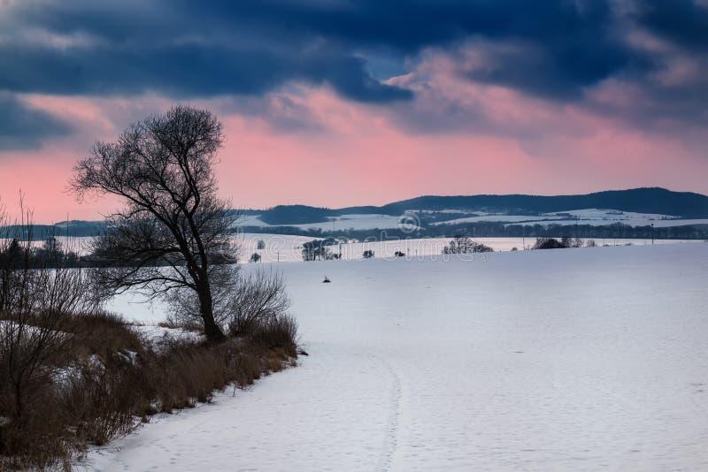 Het landschap van de de winteravond in Moravië, Tsjechische republiek royalty-vrije stock foto's