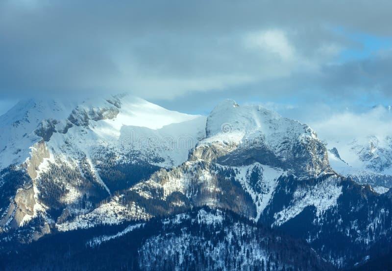 Het landschap van de de winterberg (Slowakije, Hoge Tatras). stock afbeeldingen