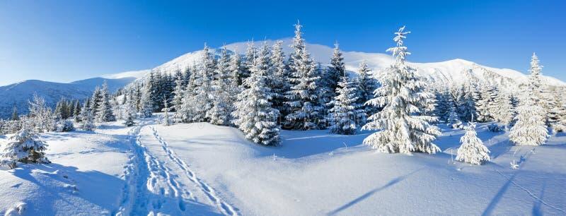 Het landschap van de de winterberg van de ochtend stock afbeeldingen