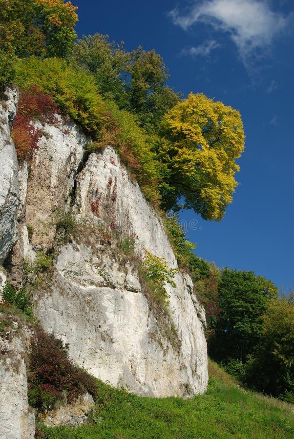 Het landschap van de herfst royalty-vrije stock afbeeldingen