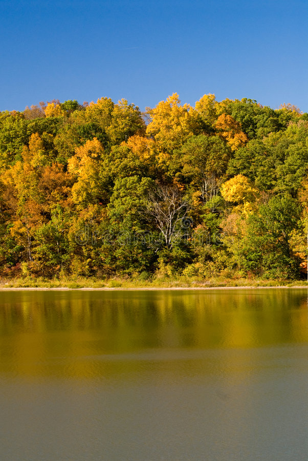 Het landschap van de herfst door meer stock fotografie