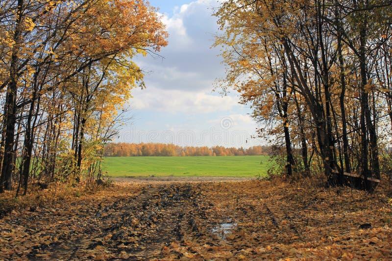 Het landschap van de herfst in Rusland stock foto