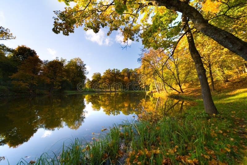 Het landschap van de herfst van meer stock afbeeldingen
