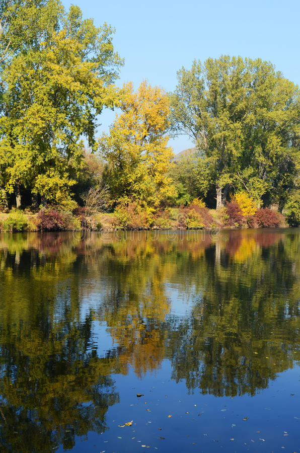 Het landschap van de herfst van regelmatige rivier stock afbeeldingen