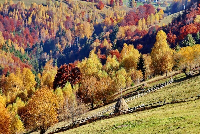 Het landschap van de de herfstdaling stock afbeelding