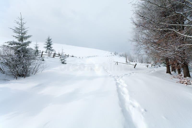 Het landschap van de het landberg van de winter stock afbeelding