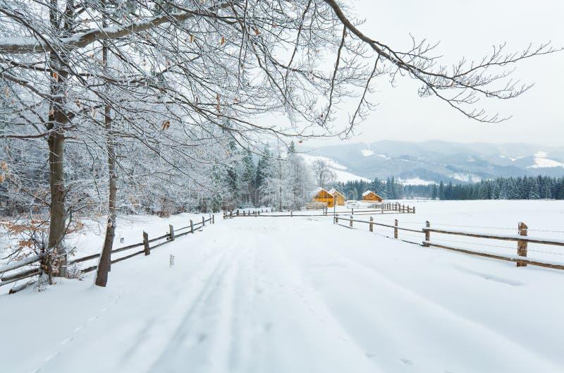 Het landschap van de het landberg van de winter stock foto's