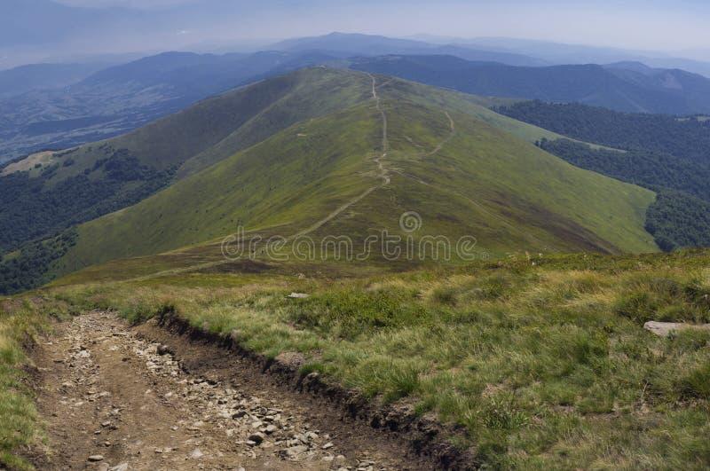 Het landschap van de Karpaten stock foto