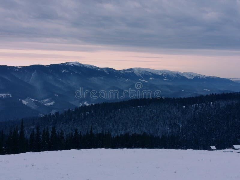 Het landschap van de Karpatische Bergen royalty-vrije stock foto