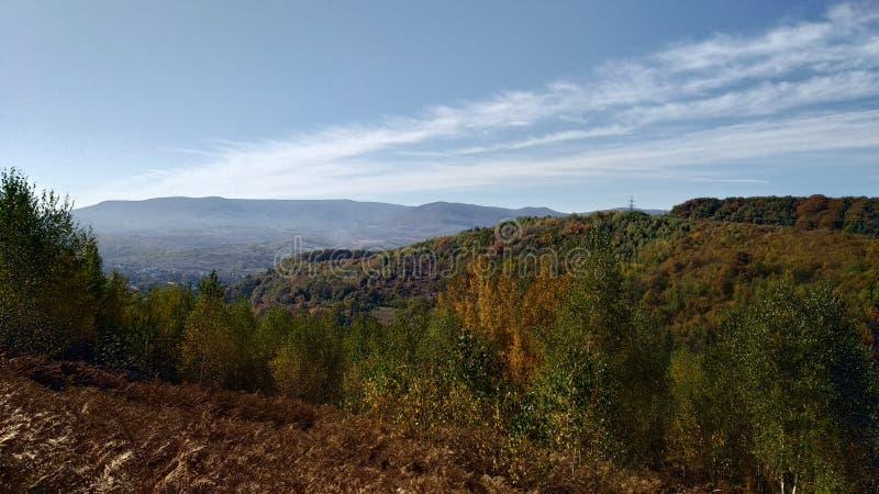 Het landschap van de Karpatische Bergen stock foto