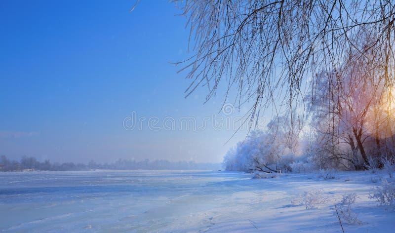 Het Landschap van de kunstwinter met Bevroren meer en sneeuwbomen stock afbeeldingen