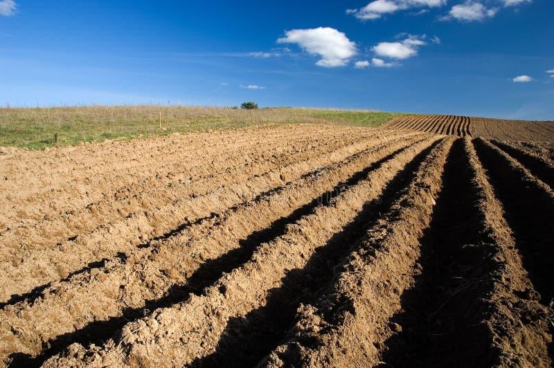Het landschap van de landbouw - geploegd gebied stock foto's