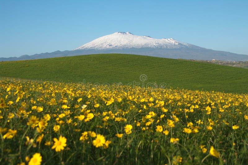 Het Landschap van de lente en zet Etna op stock afbeelding