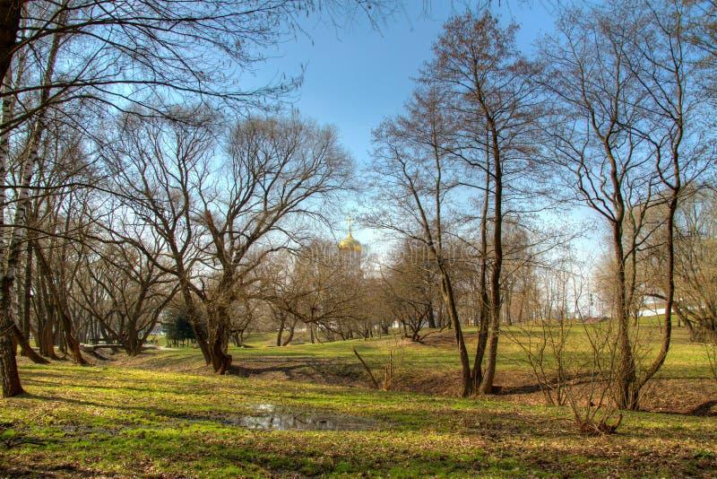 Het landschap van de lente hdr foto royalty-vrije stock afbeelding