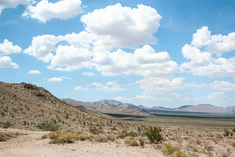 Het Landschap van de Mojavewoestijn stock foto