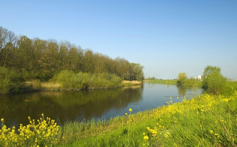 Het landschap van de polder stock afbeeldingen