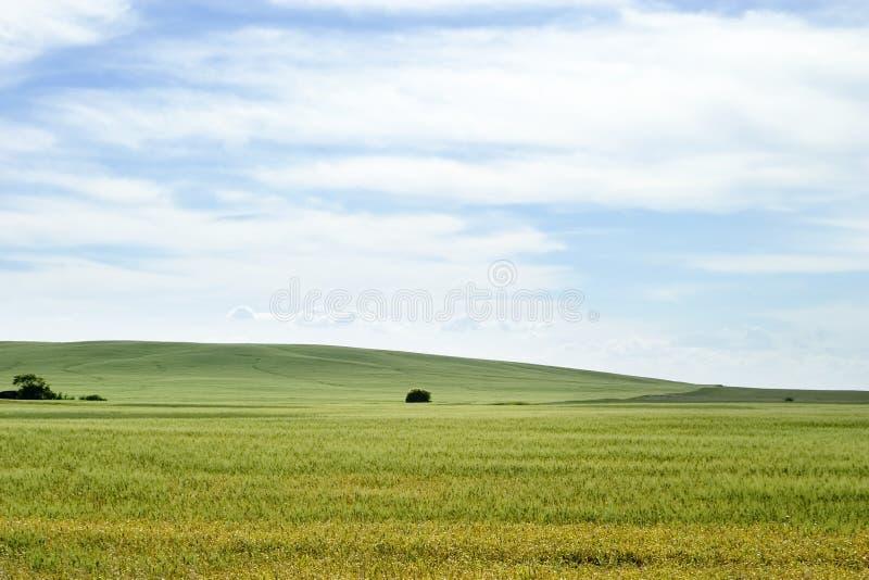 Het Landschap van de prairie stock foto
