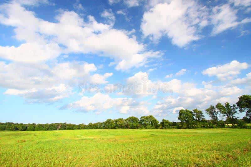 Het Landschap van de Prairie van midwesten royalty-vrije stock fotografie