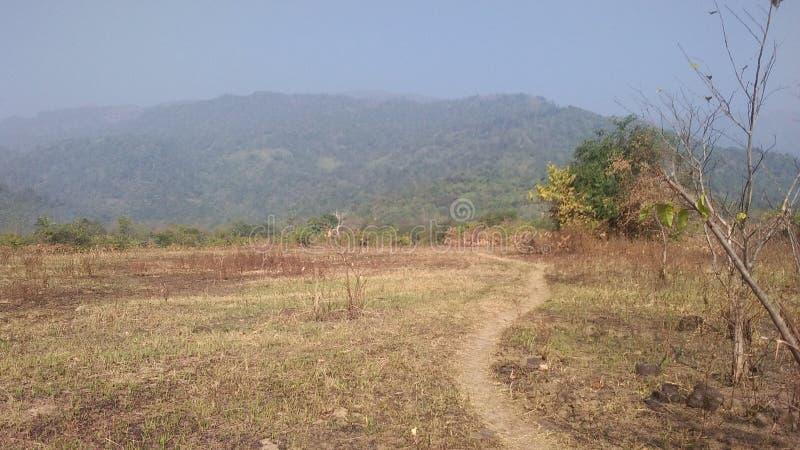 Het landschap van de de schoonhedenaard van bergenheuvels royalty-vrije stock foto's