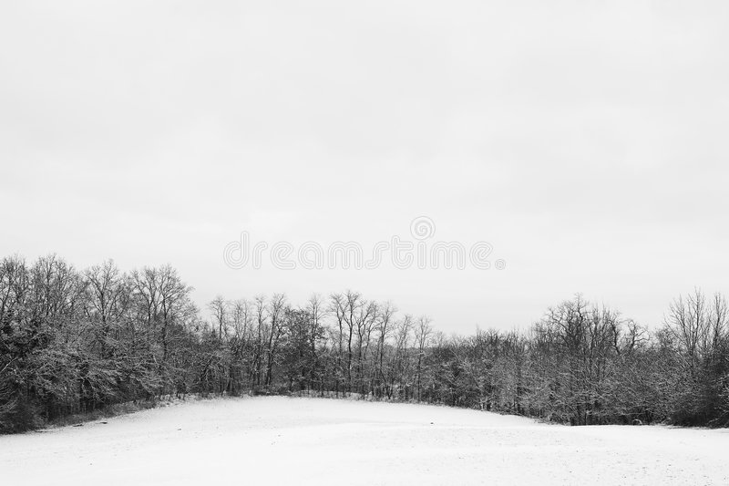 Het Landschap van de sneeuw #3 royalty-vrije stock foto's