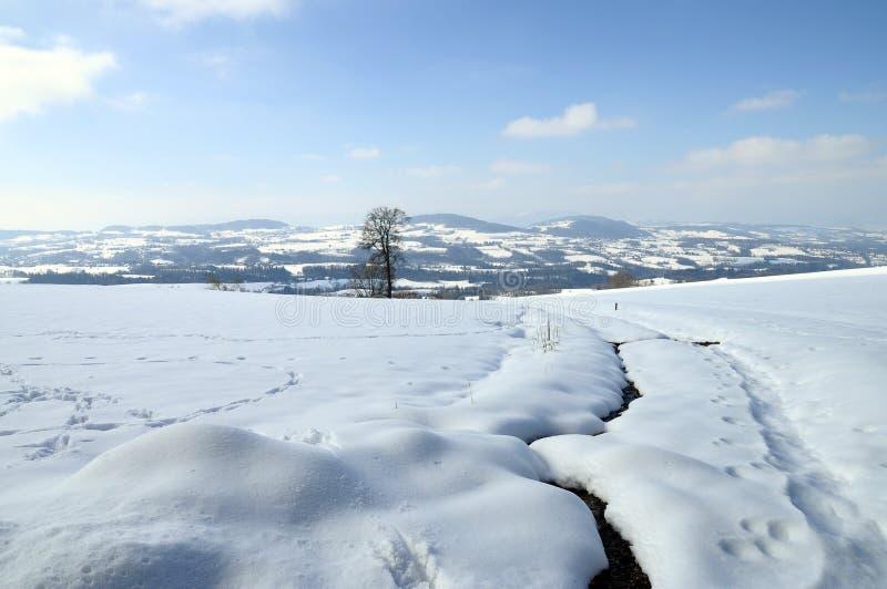 Het landschap van de sneeuw dichtbij Cruseilles, Savooiekool, Frankrijk stock fotografie