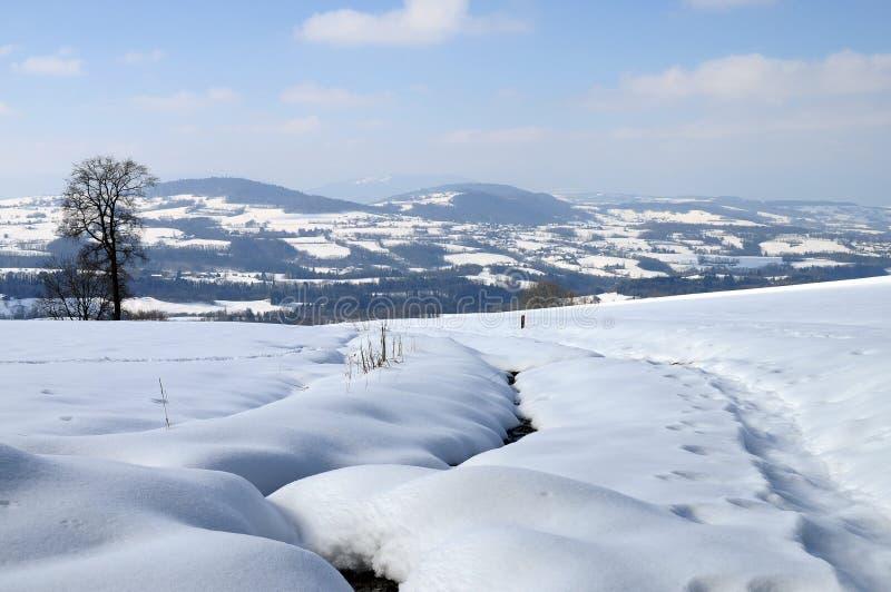 Het landschap van de sneeuw dichtbij Cruseilles, Savooiekool, Frankrijk royalty-vrije stock foto