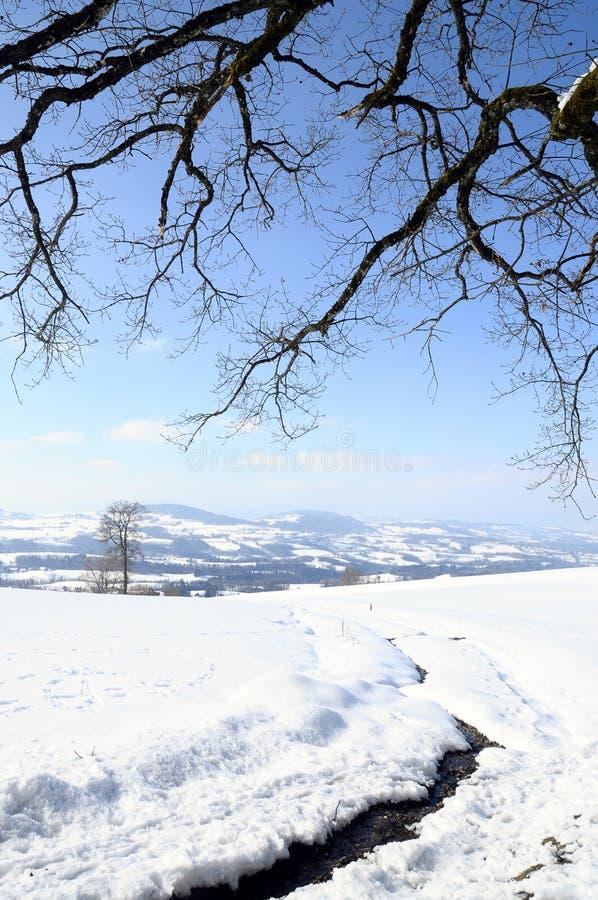 Het landschap van de sneeuw dichtbij Cruseilles, Savooiekool, Frankrijk stock afbeeldingen