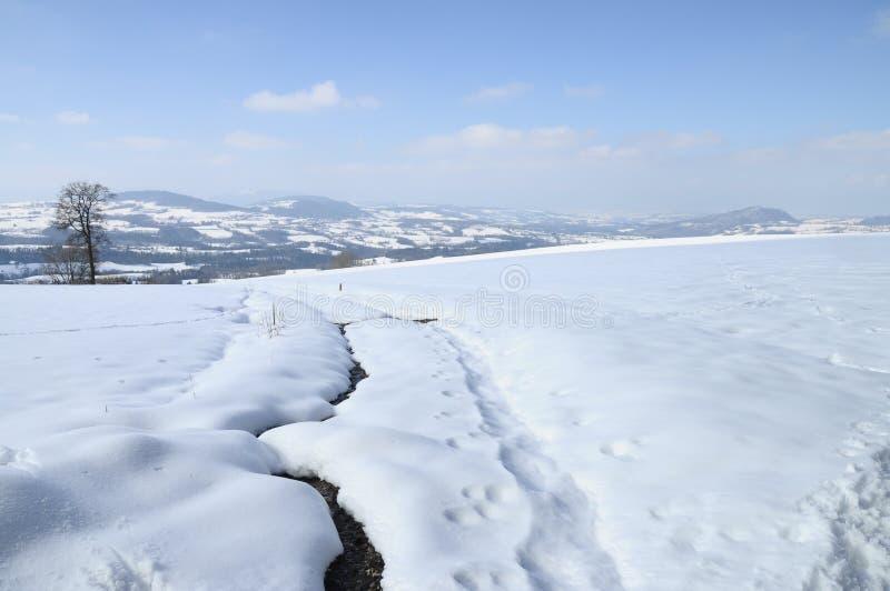 Het landschap van de sneeuw dichtbij Cruseilles, Savooiekool, Frankrijk stock foto