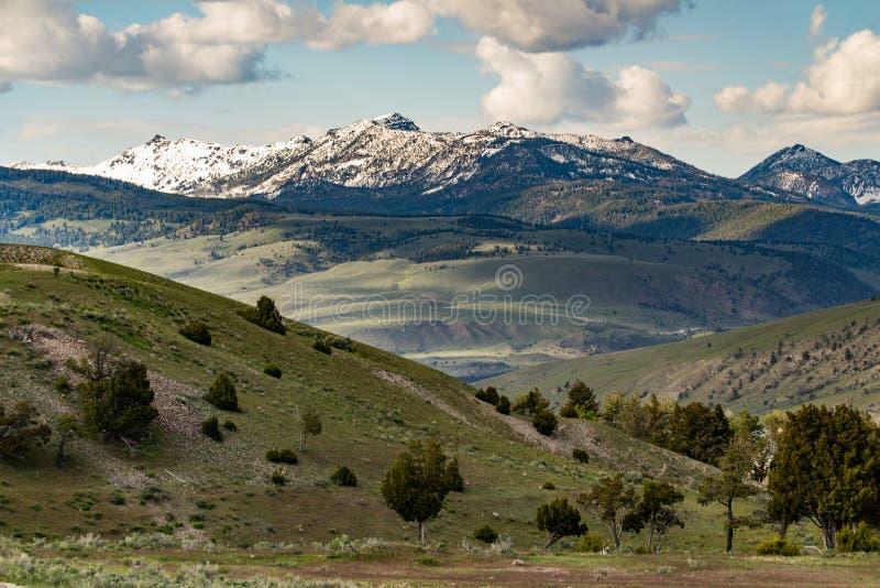 Het landschap van de sneeuwglb berg - het Nationale Park van Yellowstone royalty-vrije stock foto's